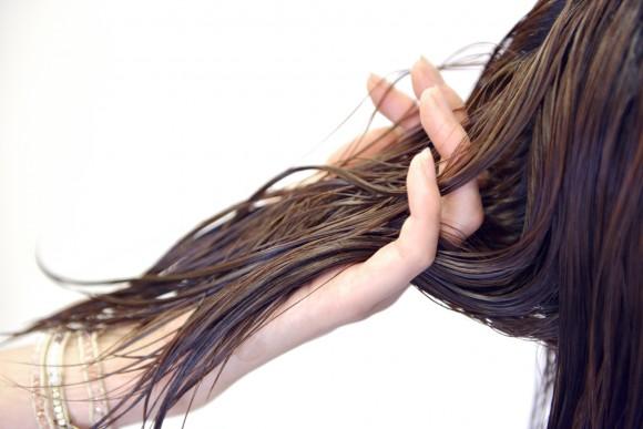 髪の毛の成分